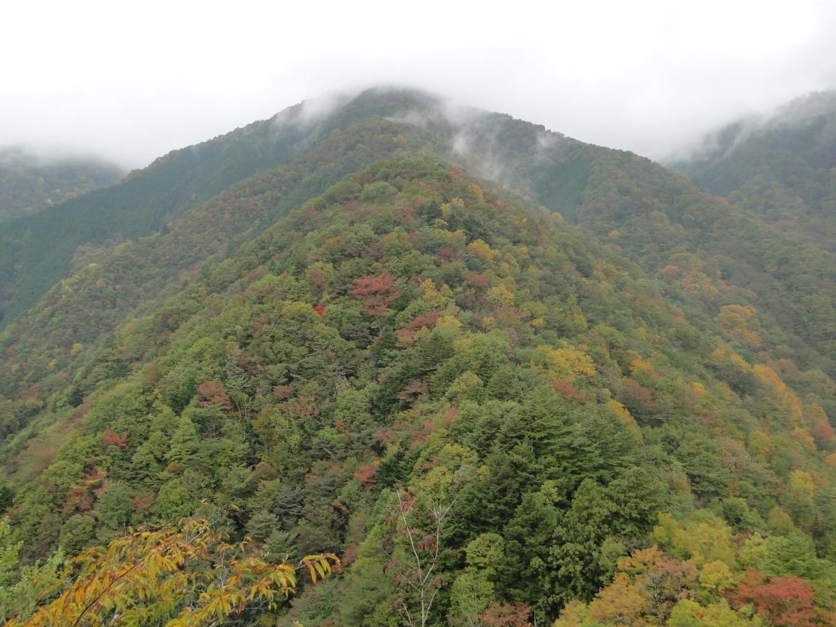 Mt Takanosu (1736m), Okutama town, TokyoPrefecture