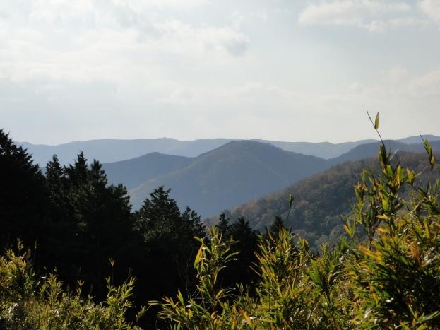 Mountain scape near the coast