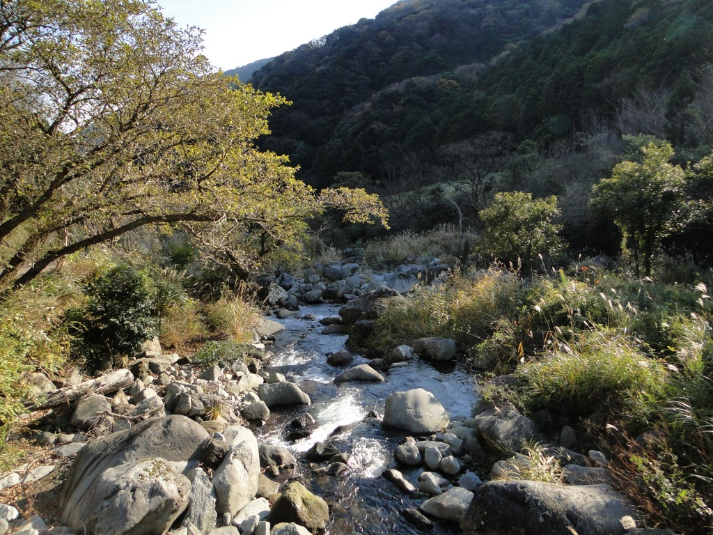 Short but nice river walk