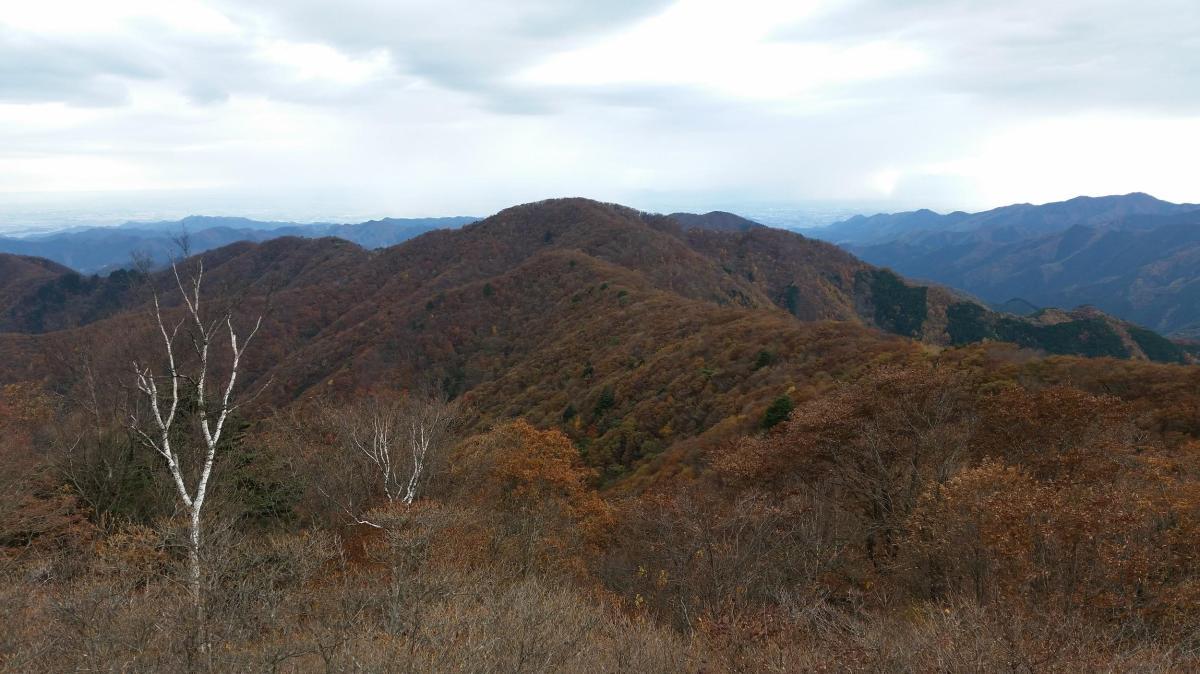 Mt Nemoto (1199m) & Mt Kumataka (1169m), Kiryu City, GunmaPrefecture