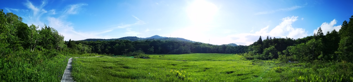 Tanbara Highland (1200m), Numata City, Gunma Prefecture & Bear Sighting