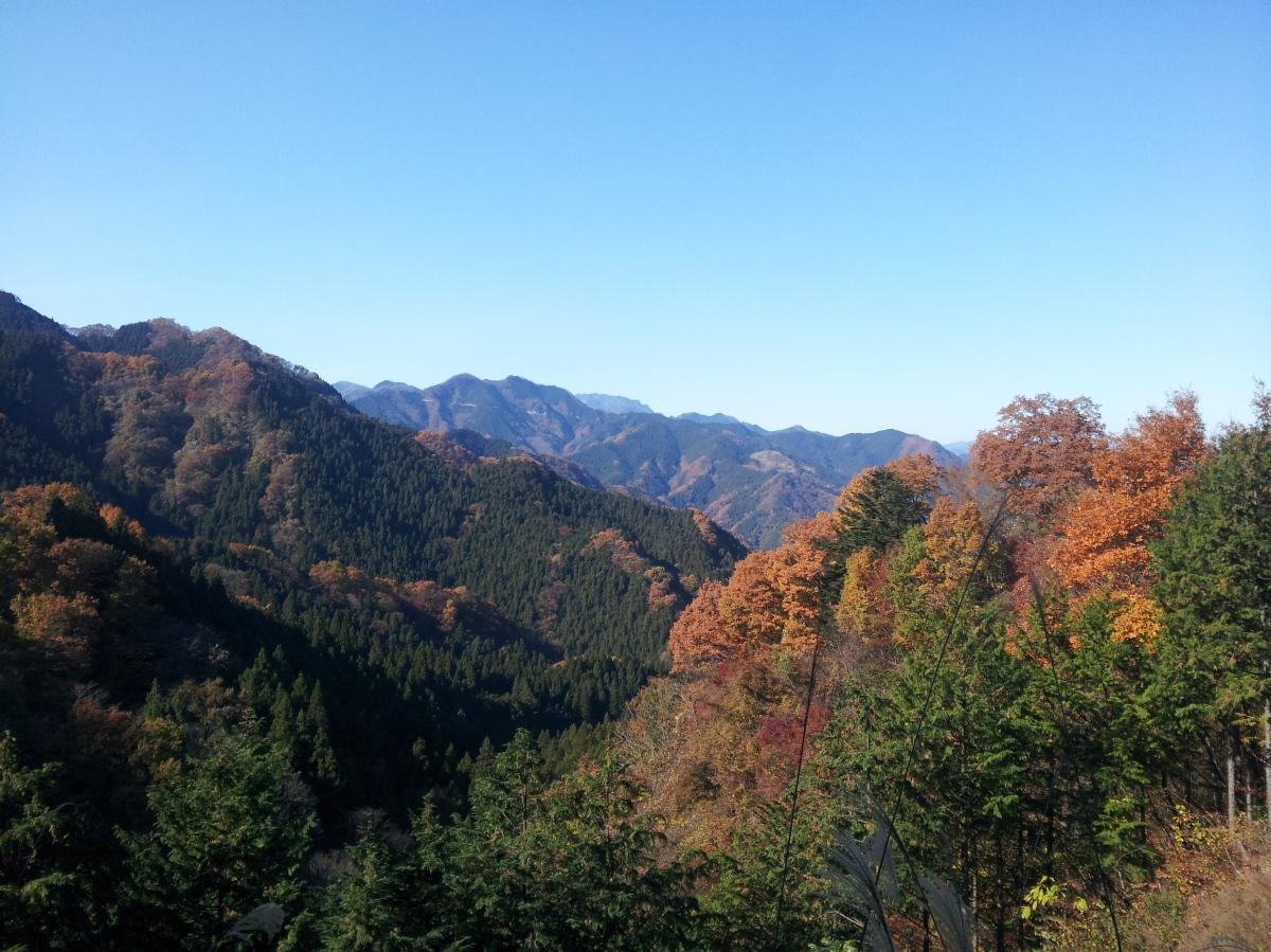 Mt Kumakura (1426m), Chichibu City, SaitamaPrefecture
