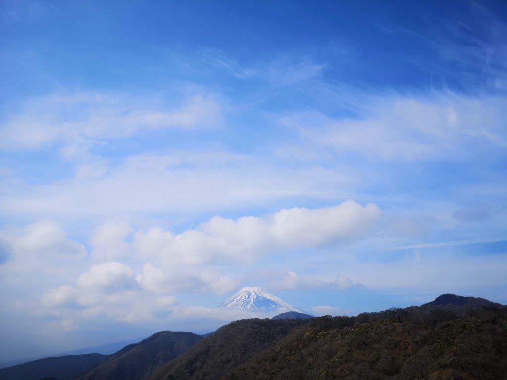 Mt Ashitaka (1504m), Numazu City, Shizuoka Prefecture, March2021