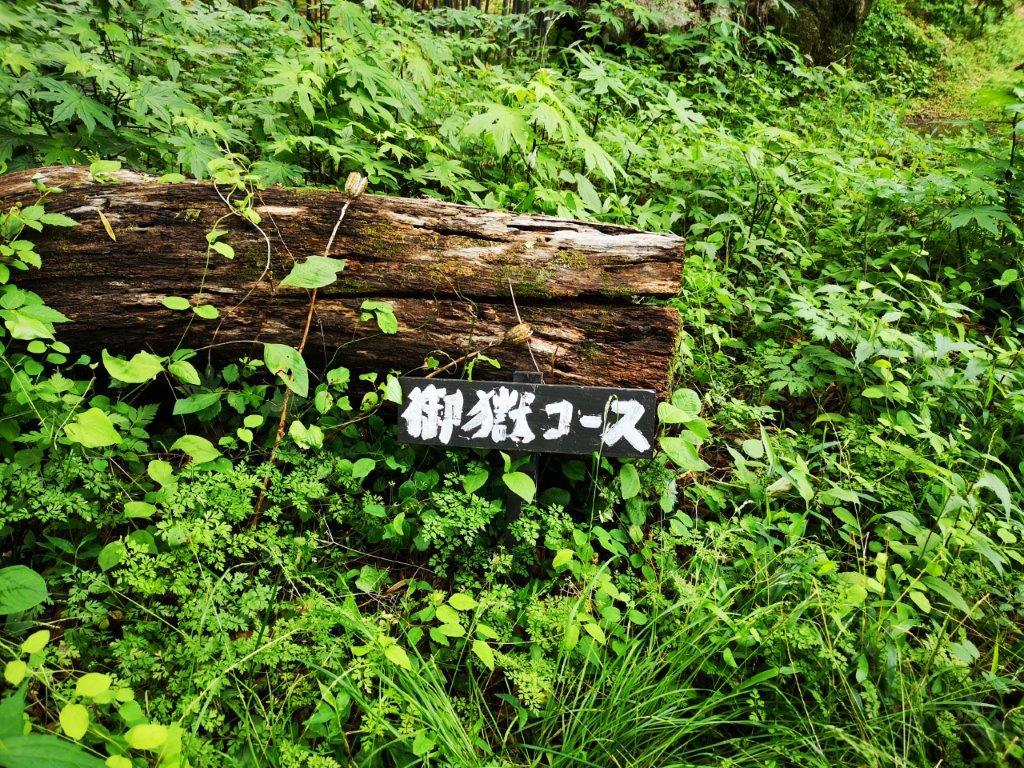 Mt Koo (550m), Mt Hinata (482m) & Mt Taka (420m), Fujioka City, Gunma Prefecture [OntakeTrail]